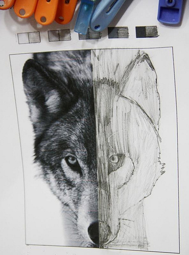 symmetry sketch
