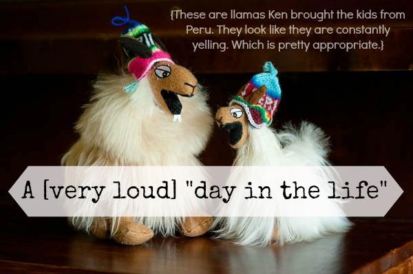 loud_llamas