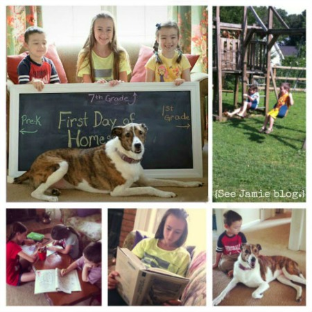 first day of homeschool collage