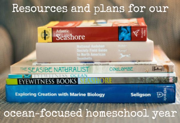 ocean focused homeschool year