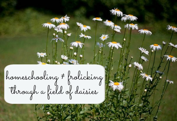 homeschooing is not frolicking through a field of daisies