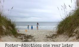 foster adoption update