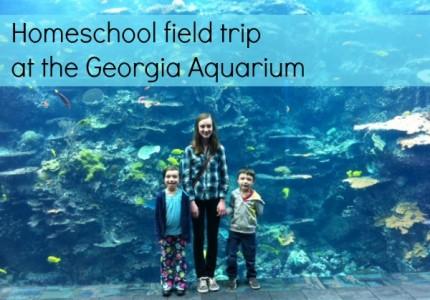 homeschool field trip at the Georgia Aquarium