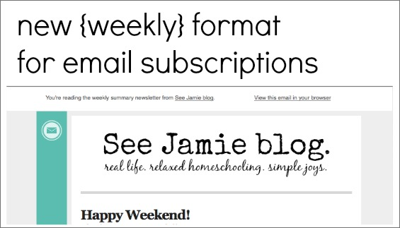 weekly email format