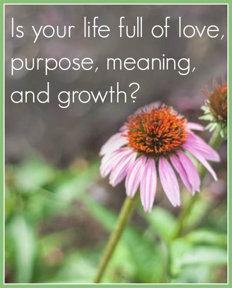 Purpose, love, growth: is your life full?
