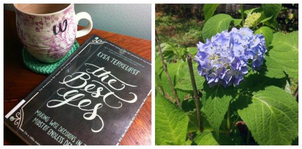 book tea flowers