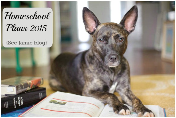 Homeschool Plans 2015