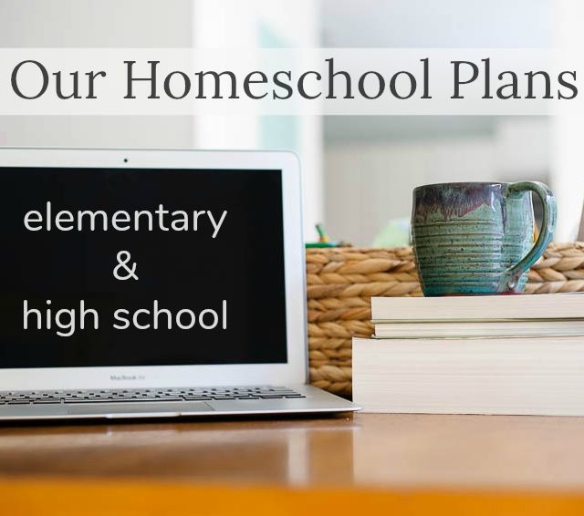 2017 homeschool plans