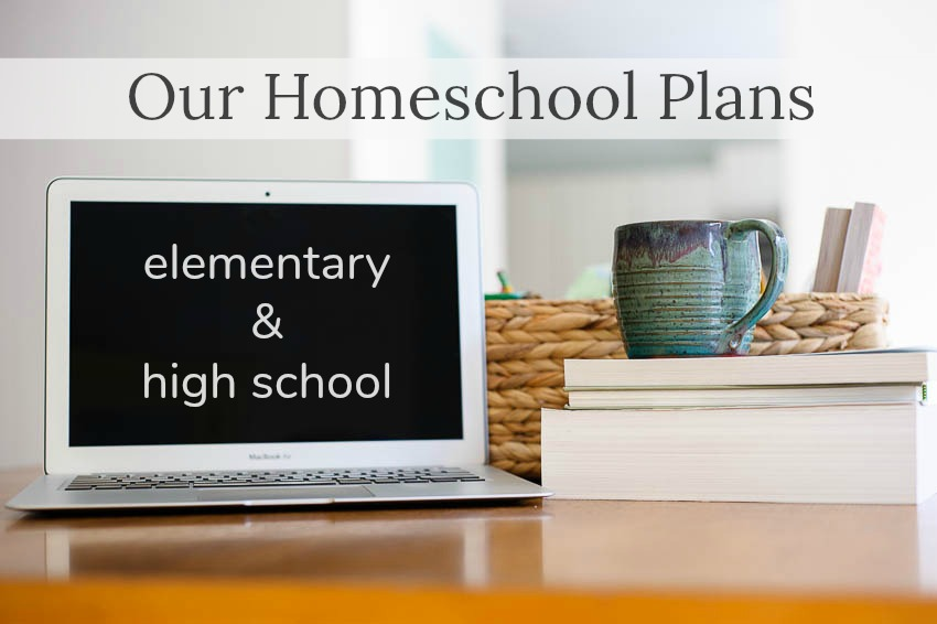 Our {relaxed} homeschool plans for 2017