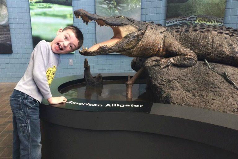 homeschool kid on field trip to NC Aquarium