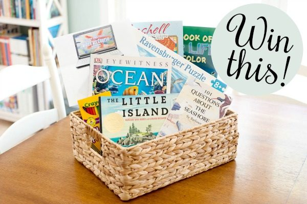 Ocean learning gift basket