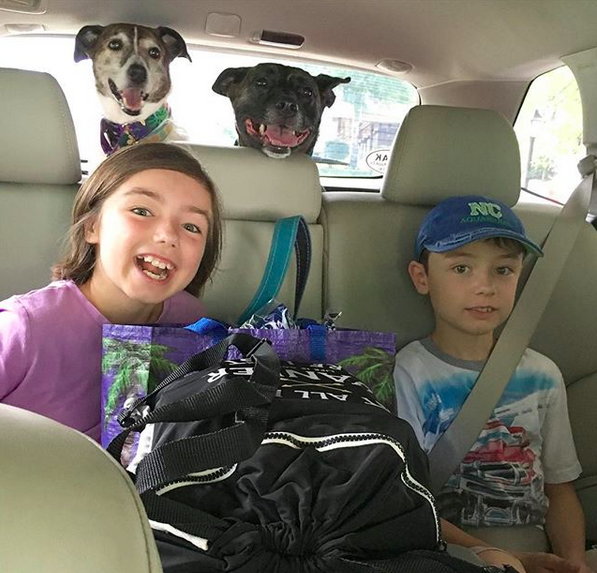 evacuating with kids and dogs