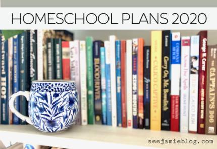 homeschool plans 2020