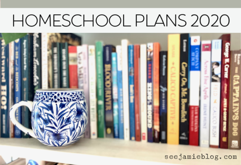 homeschool plans 2020